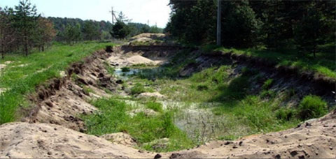 Дорога, перекопанная «политическими экологами» организации «Местные»